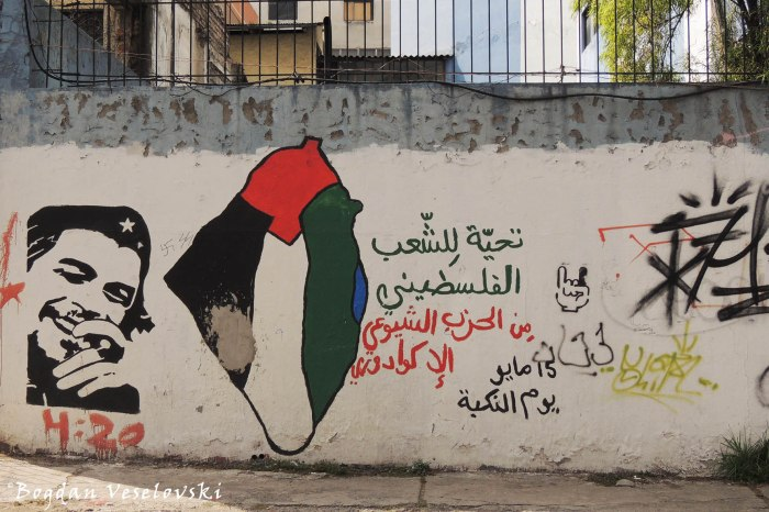 Arab Che Guevara