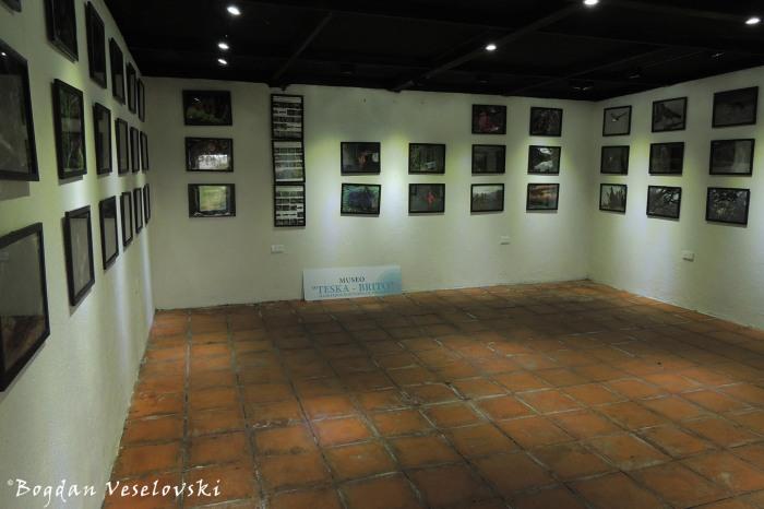 'Teska-Brito' Museum