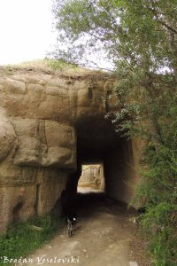 Tunnel in the Pigeon Valley