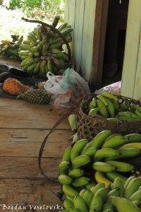Fruit loading