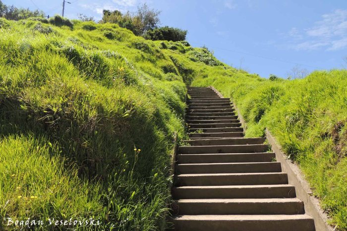 Stairway to Panecillo