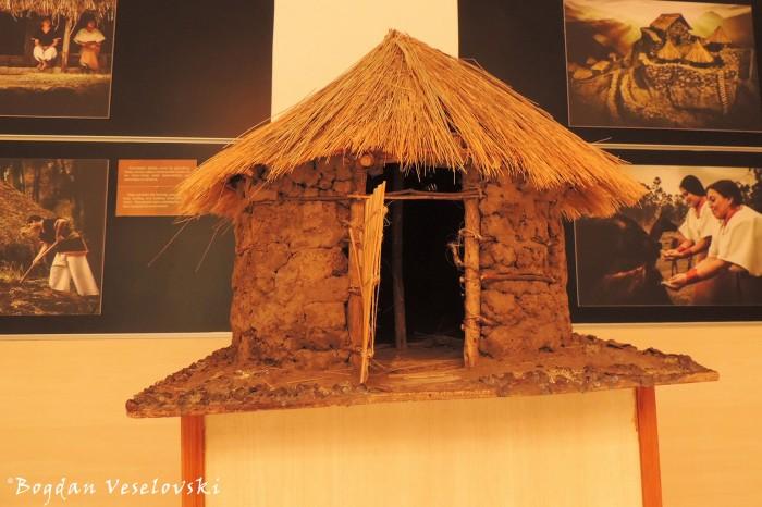 Clay hut