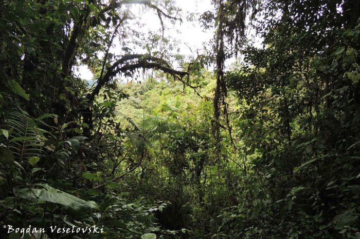 Eco-route