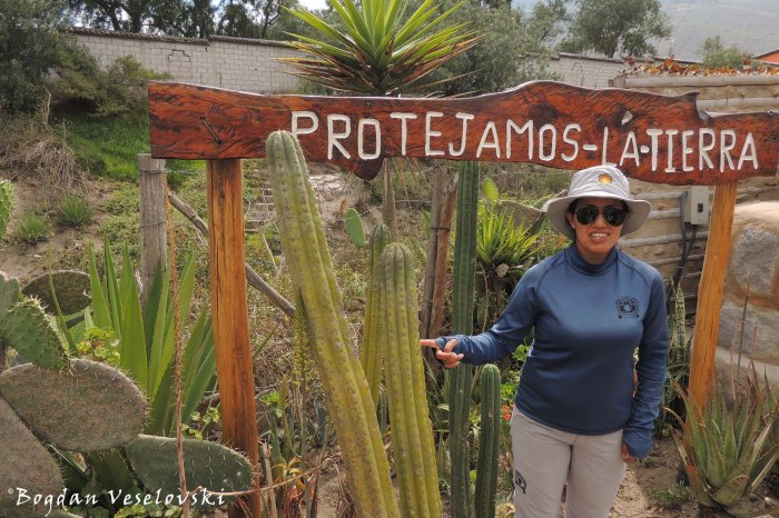 The guide showing the San Pedro cactus