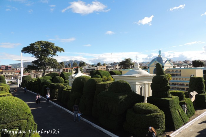 Topiary since 1936