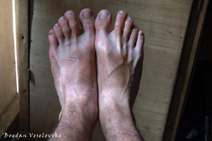 Bicolor feet